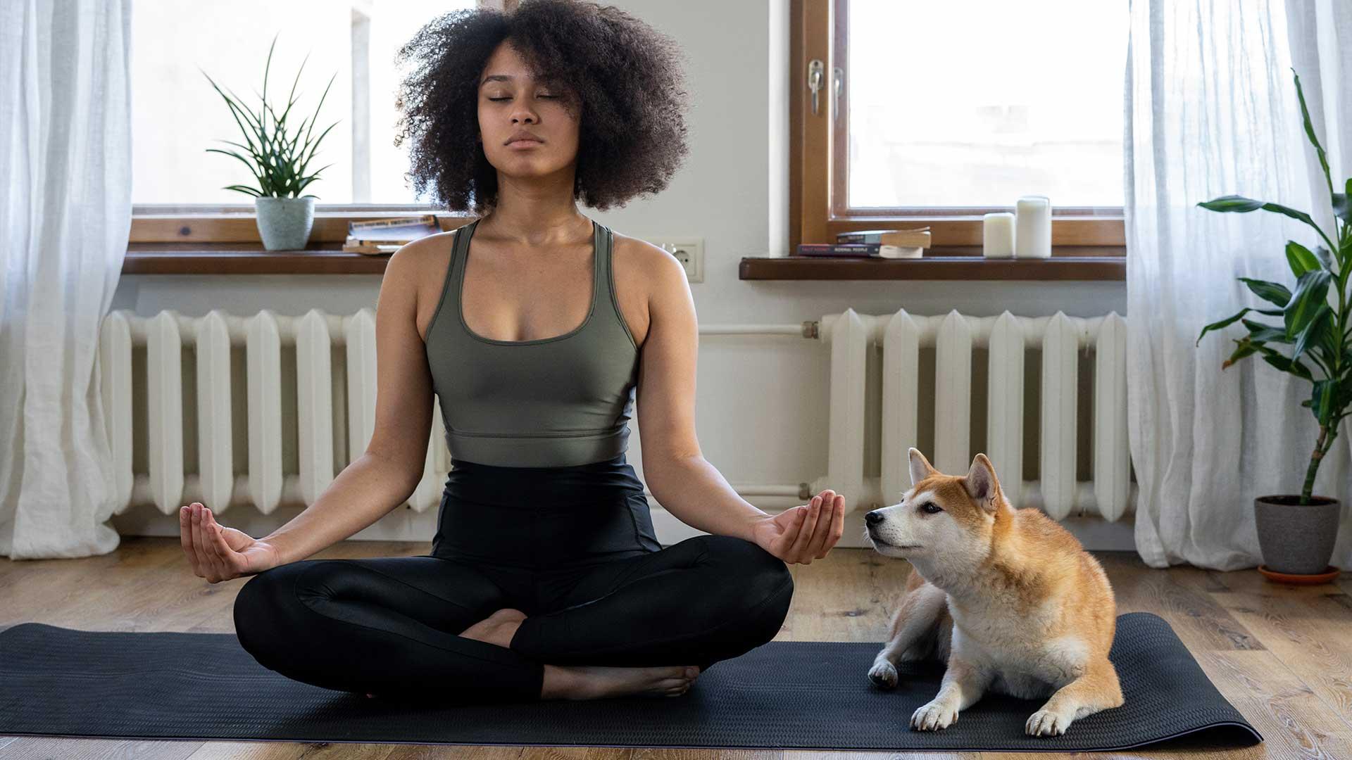 Yoga con cane e gatto
