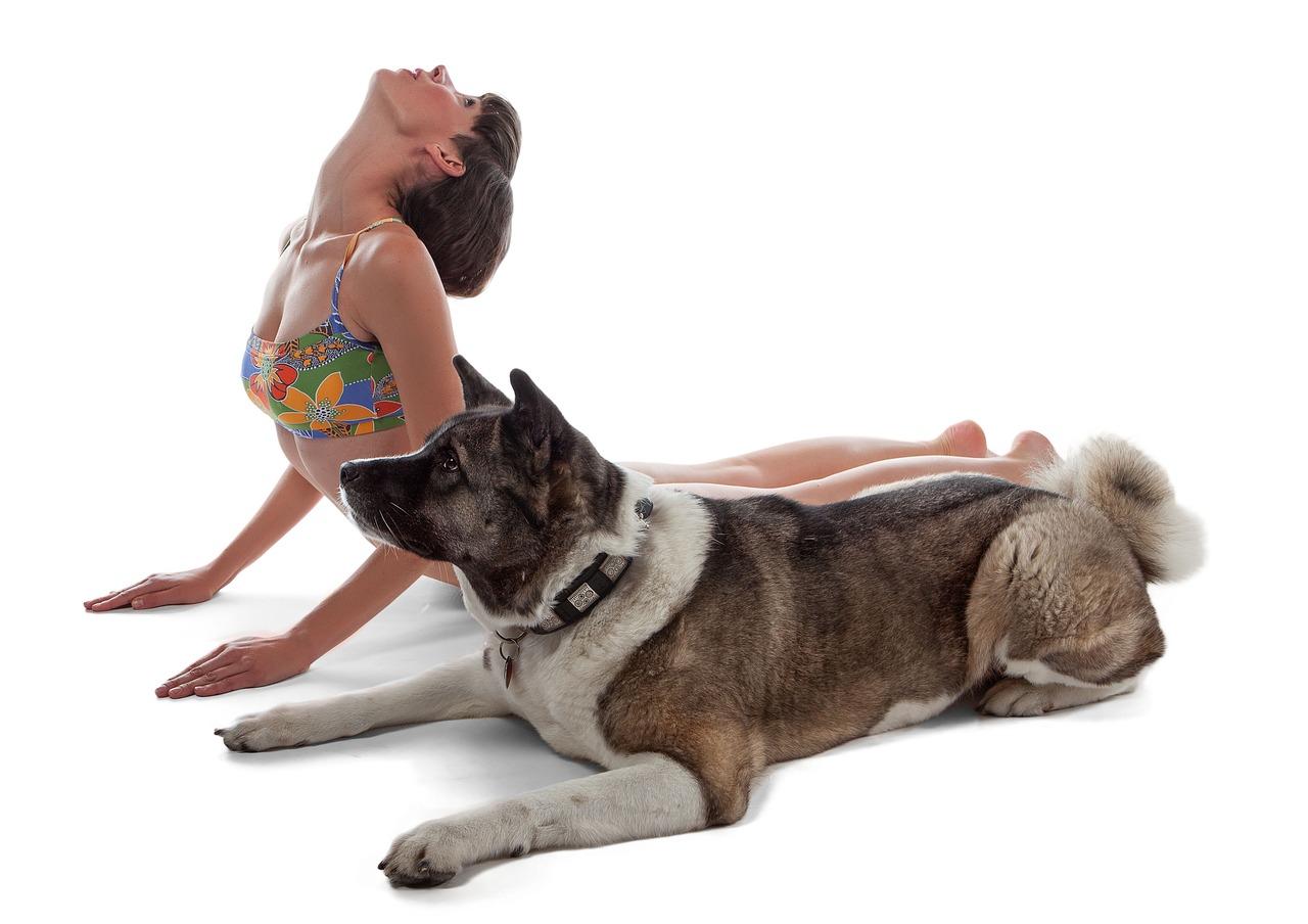 doga-yoga-con-cane
