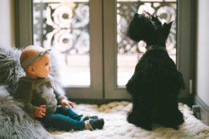 cane e bebè